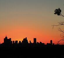City Silhouette 1 by Jay  Little