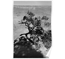 GRAND CANYON sans colour #12 Poster