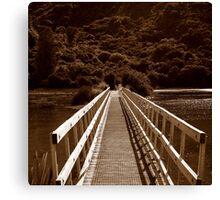 Abel Tasman walkway Canvas Print