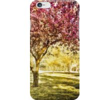 Pink spring tree, Boston MA iPhone Case/Skin