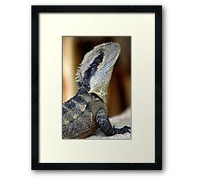 Lizard of Oz - Up Close and Personal Framed Print