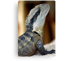 Lizard of Oz - Up Close and Personal Canvas Print