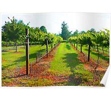 Walk Mill Winery Poster