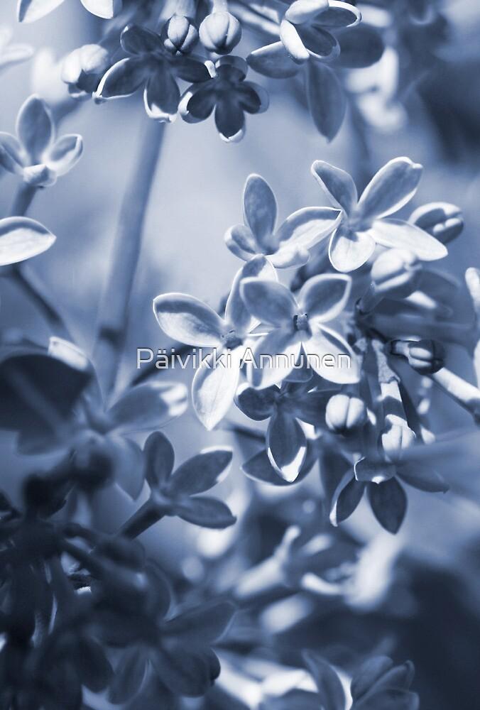 Fairytale world founded -blue by MistyIslet