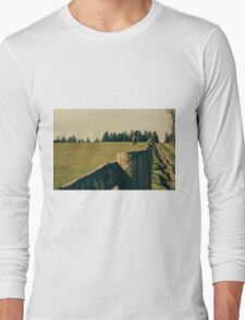 Horse In A Pasture Long Sleeve T-Shirt