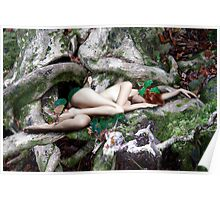 FOREST DREAMS Poster