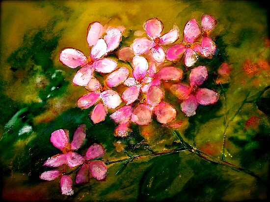 Flowers..Geranium by  Janis Zroback