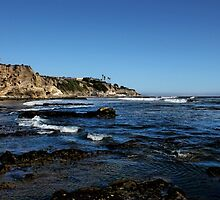The Cliffs of Pismo Beach by Judy Vincent