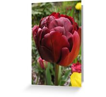 Double red Greeting Card