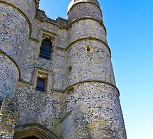 Donnington Castle - nr Hungerford by JRHPhotography