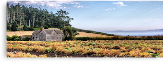 Ferry House Panorama by Rick Lawler