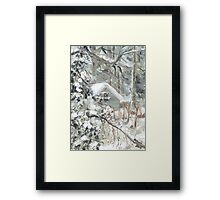 Workshed past the garden in Snow Framed Print