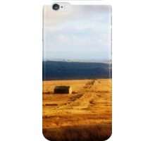 Winter colour in Lancashire iPhone Case/Skin