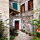 Potted Entrance in Italy by Warren. A. Williams