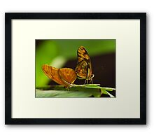 'Flaming Love' Framed Print