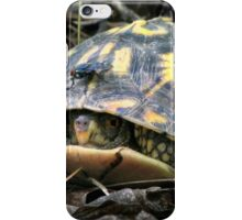 """Will you flit a little faster?"" said the turtle to the fly. iPhone Case/Skin"