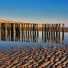 Reflections on the beach 4 by Adri  Padmos