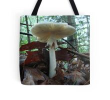 Tiny Toad 'Neath Parasol Mushroom Tote Bag