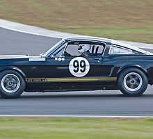 Shelby Mustang 350 GT (David Wenman) by Willie Jackson