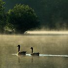 Return to Goose Island by Intheraine