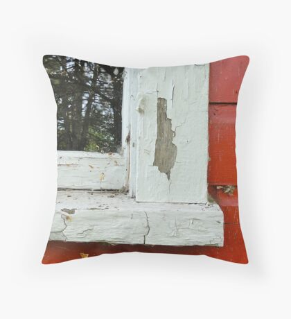 Reflecting on Time Gone By Throw Pillow
