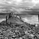 Lindisfarne Castle by Rachael Talibart