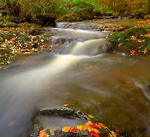 May Beck, Littlebeck, North Yorkshire Moors by James Paul