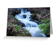 Forest Cascades Greeting Card