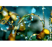 Summer Showers Photographic Print