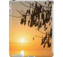 Brilliantly Sunlit Golden Autumn Jewels iPad Case/Skin
