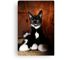 Lord of the Manor Canvas Print