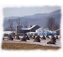Amish Winter Serenity Photographic Print