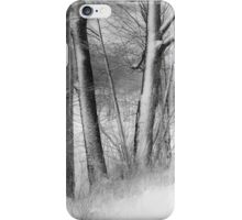 gateway to the winter forest iPhone Case/Skin