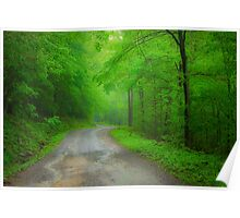 The Road to Dolly Sods Poster