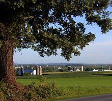 Amish Farmland Sprawl by Wes Clemmer