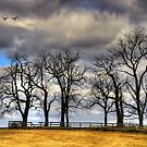 BROKEN FENCES by MIKESANDY