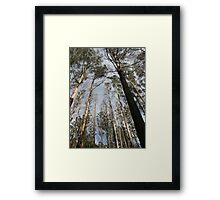 "Murrindindi #1 – ""A Dedication to the Victims of the Black Saturday Bush Fires"" Framed Print"