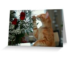 Smell The Rose Greeting Card