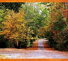 Autumn in Texas by Judy Vincent