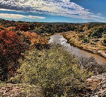 Pedernales River in Autumn by Judy Vincent
