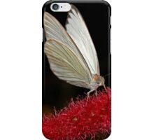 Great Southern White iPhone Case/Skin