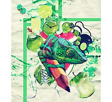 Oh Fruit! Photographic Print