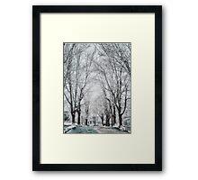 Snow. Brookline MA Framed Print
