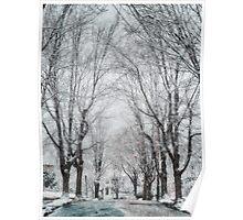 Snow. Brookline MA Poster