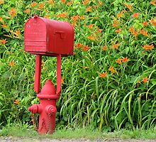 Firehouse Mailbox and Fire Hydrant by Jean Gregory  Evans