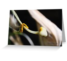 Tangled Up In You. Greeting Card