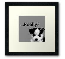 Really? Framed Print