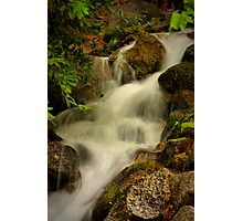 Lower Fall Photographic Print