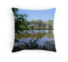 U Shape Framing reflections Throw Pillow