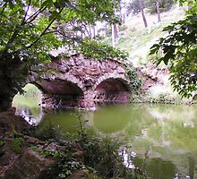 The Rustic Bridge - 1893, What the eye sees by Cupertino